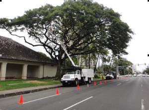 Honolulu Arts Trimming